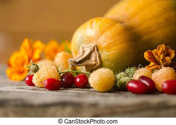 herbst, bunte, himbeeren, dekoration, kürbise, gelber , hartriegel, marigold.