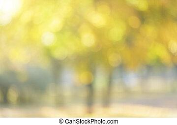 Herbst, Fokus, hintergrund, heraus