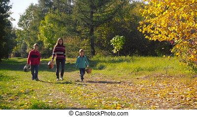 Herbst, Gehen, Kinder, drei, Pilze, wald, glücklich