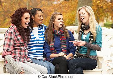 herbst, jugendlich, gruppe, sitzen, mädels, parkbank, vier