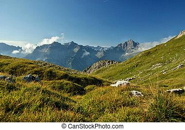 herbstidylle in den Allgaeuer Alpen - Gr?ne Bergwiese mit...