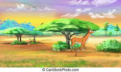 Herd of Antelopes or Gazelles Runs Through Savannah in a...