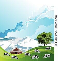 Herd of cows grazing - Picturesque rural scene with a herd ...