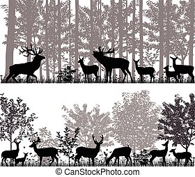 Herd of deer - A herd of deer in silhouettes on the...