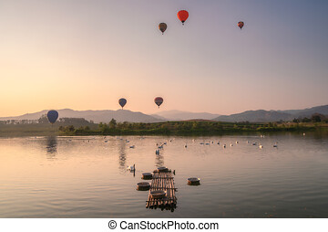 Herd of swans in pond with hot air balloons flying on hill