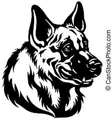 herdershond, hoofd, dog