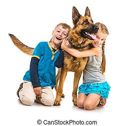herdershond, kinderen, dog