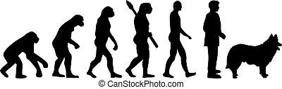 Herding evolution