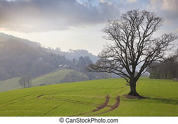 Herefordshire countryside, England
