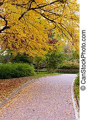 herfst, alleyway, park, straat, bedekte