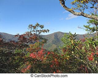 herfst, bergen, rokerig