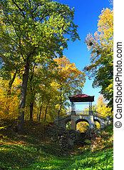herfst bomen, op, blauwe hemel, achtergrond