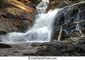 herfst, bos, en, rivier landschap, 12