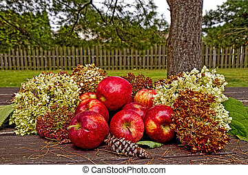 herfst, display, apples/hydrangeas