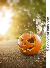herfst, en, halloween