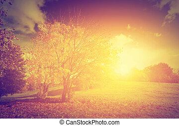 herfst, herfst, landschap., ouderwetse , stijl