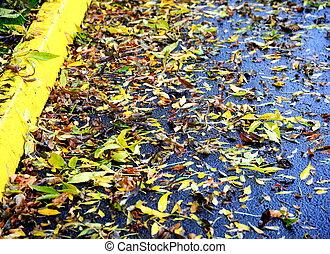 herfst, leaves.