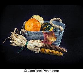 herfst, oogsten, met, pompoennen