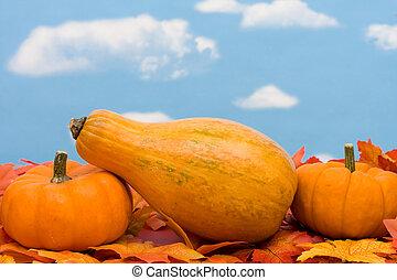 herfst, oogsten