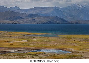 herfst, op, hoge bergen, lake:, blauw water, oppervlakte, bergen, in, de, nevel, in, de, achtergrond, om te, de, voorgrond, een, reusachtig, akker, met, gele, gras, de, himalayas.