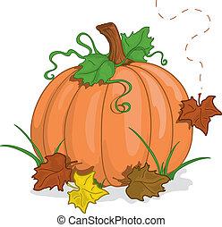 herfst, pompoen