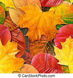 herfst, vellen, seamless, achtergrond.
