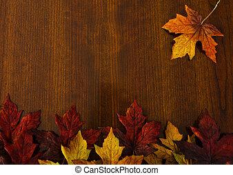 herfst, veranderende verlofen, natuur, en, dankzegging, backgrounds.