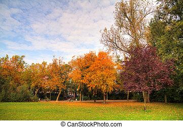 herfst, vondelpark