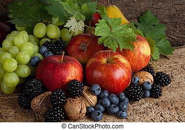 herfst, vruchten, voor, dankzegging