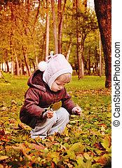 herfst, wandelende, park, kind