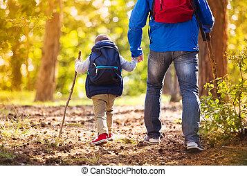 herfst, wandelende, vader, bos, zoon