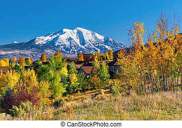 herfst, woonbuurt, colorado