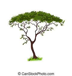 hermoso, árbol, para, su, diseño