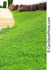 hermoso, árboles,  -, verde, pasto o césped, paisaje