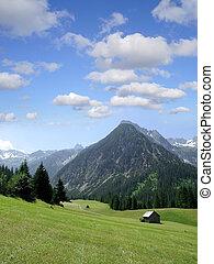 hermoso, alpes, lechtal, gramais, austria, tirol, vista