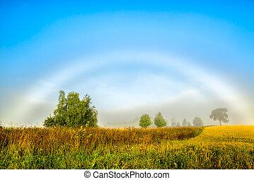 hermoso, arco irirs, mañana, brumoso