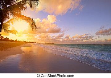 hermoso, arte, encima, playa tropical, salida del sol