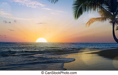 hermoso, arte, encima, tropical, playa puesta sol