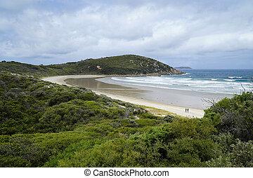 hermoso, australia, picnic, parque nacional, victoria, prom,...