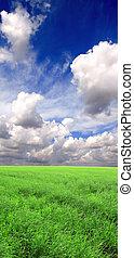 hermoso, bandera, -, paisaje