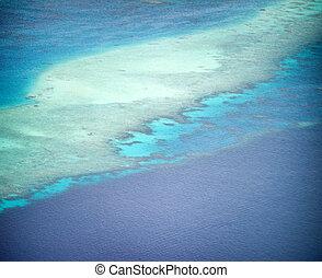 hermoso, barrera coralina, vista aérea