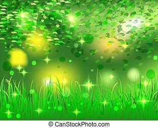 hermoso, brillante, resumen, bosque