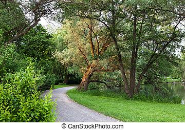 hermoso, camino, en el parque