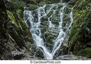 hermoso, cascada, conexión en cascada