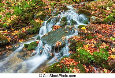 hermoso, cascada, en, montaña, río, en, colorido, bosque de otoño, con, rojo, y, naranja sale, en, sunset.