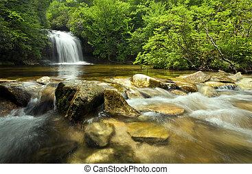 hermoso, cascada, exuberante, bosque, lluvia