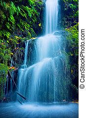 hermoso, cascada, exuberante