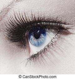 hermoso, cierre, ojo de la mujer, arriba