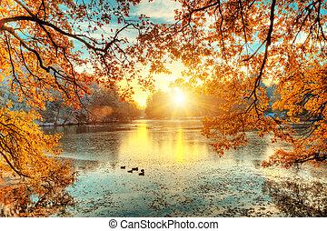 hermoso, coloreado, árboles, con, lago, en, otoño, paisaje, fotografía