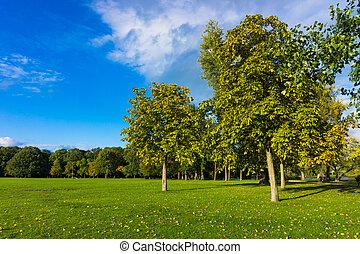 hermoso, composición, paisaje, naturaleza